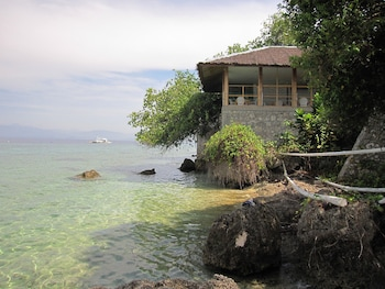 Quo Vadis Dive Resort Moalboal Property Grounds