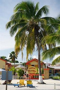 Hotel - Tropical Paradise Hotel
