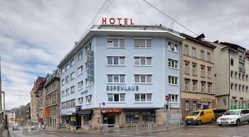 Hotel - Hotel Espenlaub