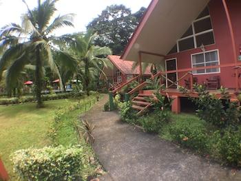 Caribbean Paradise Eco-Lodge - Property Grounds  - #0