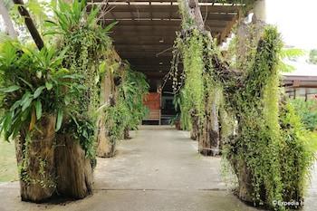 Dos Palmas Island Resort & Spa Palawan Exterior detail