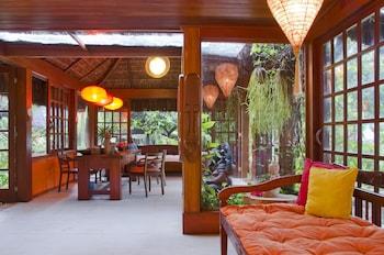 Sombra e Agua Fresca Spa - Interior Entrance  - #0