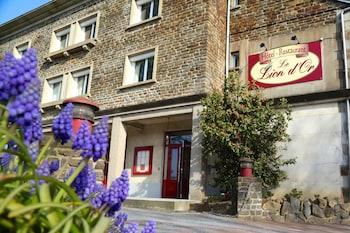 Hotel Le lion d`or