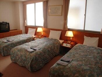 HOTEL HIMEJI PLAZA Room