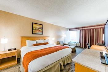 丹佛麗笙飯店 - 極光 Radisson Hotel Denver - Aurora