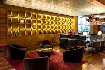 薩瓦西貝洛奧里藏特溫德姆 TRYP 飯店 TRYP by Wyndham Belo Horizonte Savassi