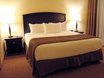 Suite, 1 Bedroom (1 Bathroom)