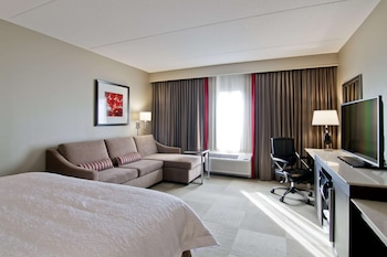 Room, 1 King Bed with Sofa bed, Refrigerator & Microwave